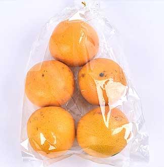 자몽 1.3kg내외(4과)