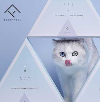 퓨리테일 고양이 캣닢 선물 세트